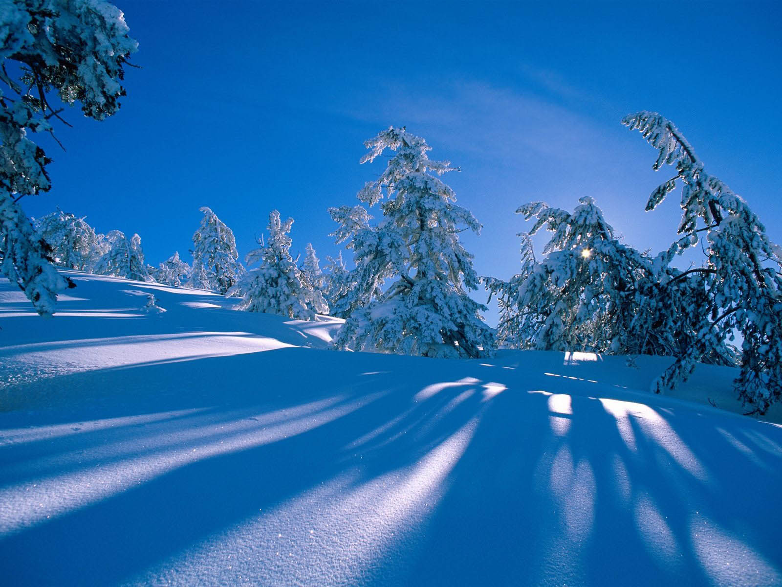 Winter Wallpaper For Desktop Background
