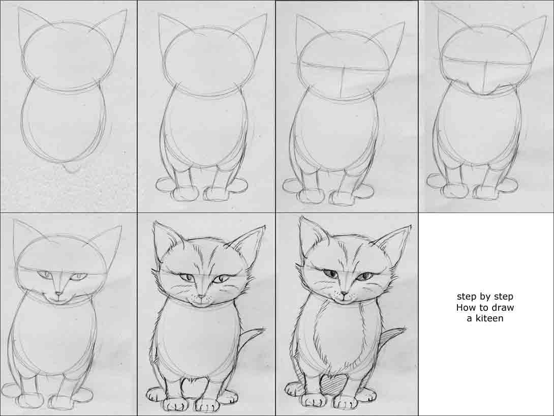 video jug how to draw a kitten