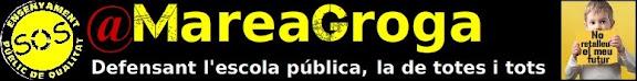 @Mareagroga en defensa de l'ensenyament públic