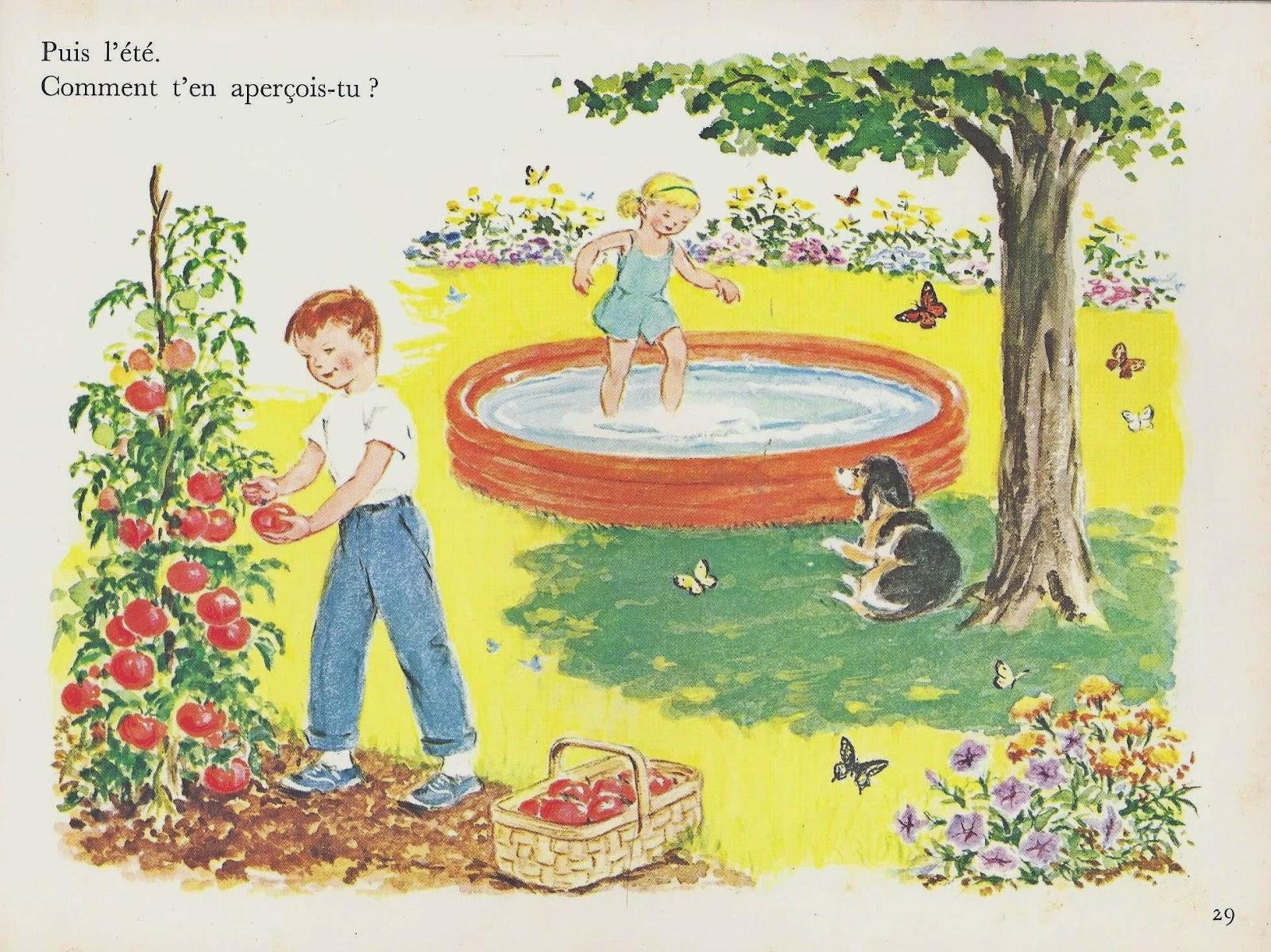 Leçons de choses: je découvre les plantes (1983)