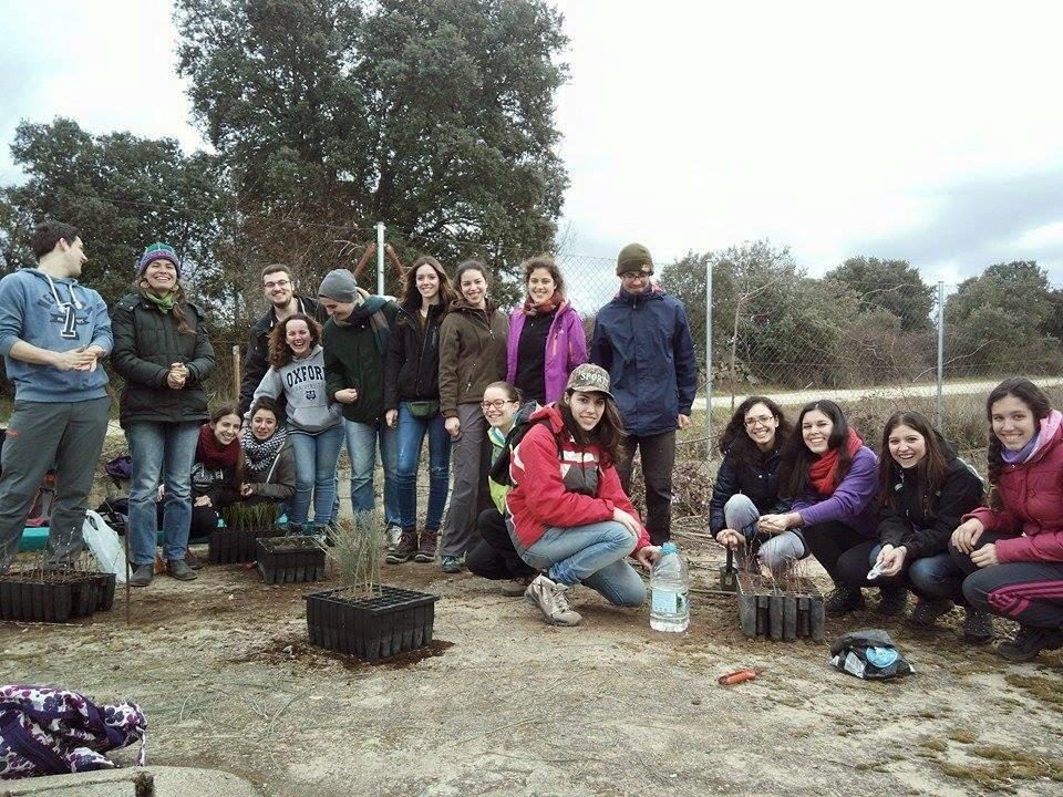 Colectivo bellotero de salamanca jornada de reforestaci n for Viveros salamanca