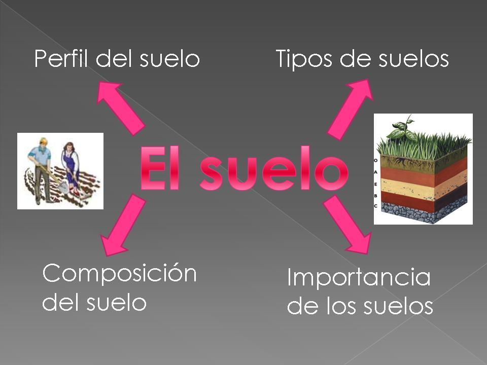 El suelo y sus tipos for Importancia de los suelos