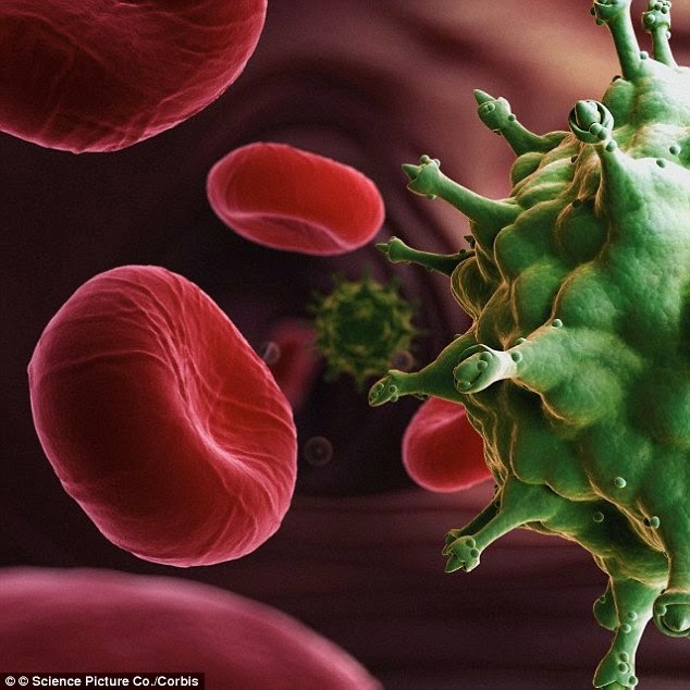 Scientists 'Delete' HIV From Human Cells