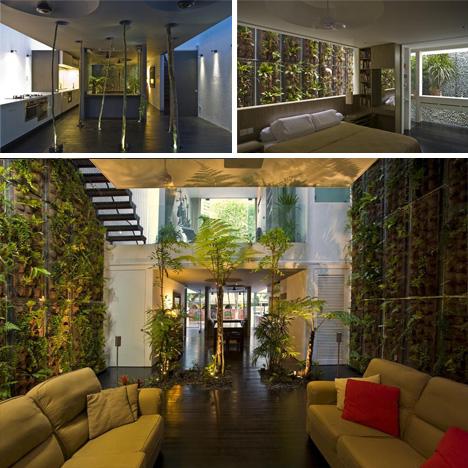 Jungle Home Design Back 2 Home