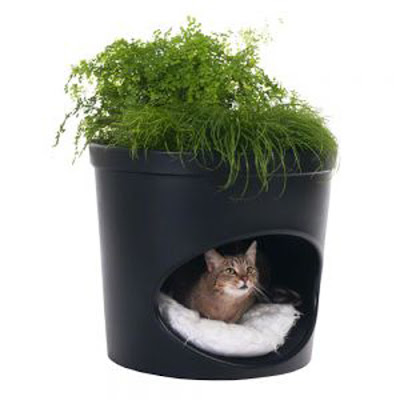 Paul Hendrikx's Studio Mango's pet product - Pet Planter