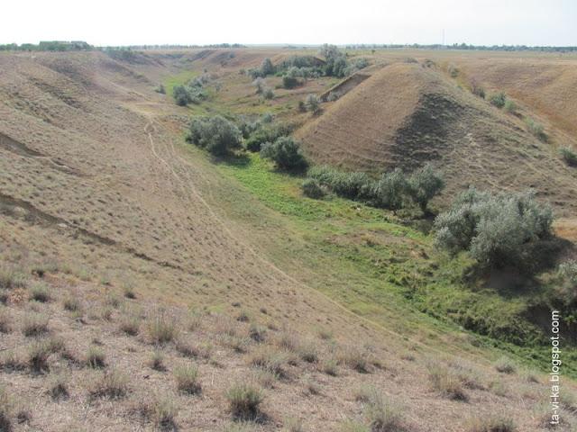 тематическое развивающее занятие строение почвы
