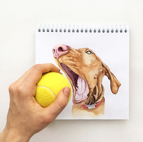 27-Want-the-Ball-Valerie-Susik-Валерия-Суслопарова-Cats-and-Dogs-Interactive-Animal-Drawings-www-designstack-co
