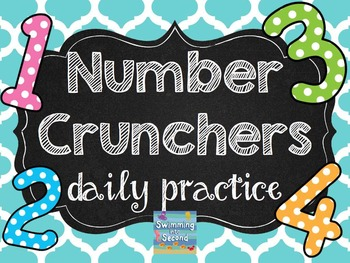 http://www.teacherspayteachers.com/Product/Number-Crunchers-daily-practice-Grade-2-1317697