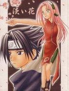 Naruto Doujinshi - Awai Hana