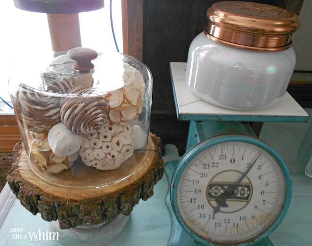 Using a Thrift Store Find as a Cloche | Denise on a Whim