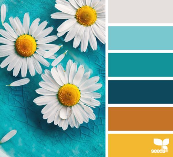 Design-Seeds.Com - удачное сочетание цветов