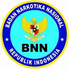 Pengumuman Seleksi Penerimaan Calon Pegawai Negeri Sipil (CPNS) BNN Tahun 2014