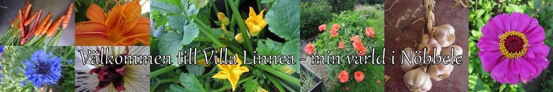Villa Linnea - min värld i Nöbbele