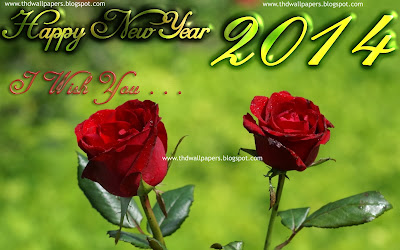 Happy New Year 2014 Photos