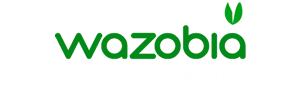 Wazobia Lifestyle | Nigerian website on LIFESTYLE|BEAUTY|COUPLE|CULTURE|DATING TIPS|FASHION|FOOD