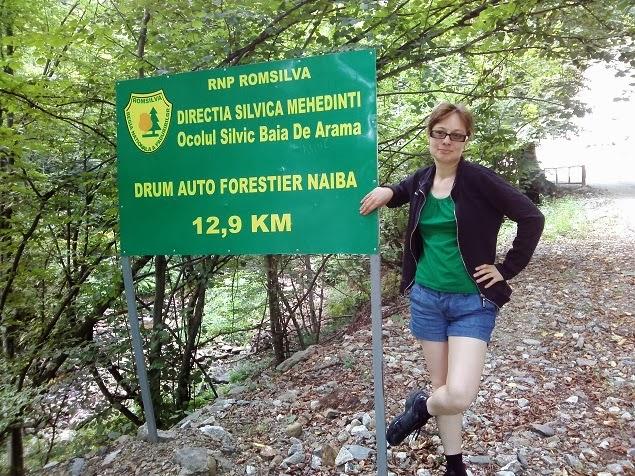 drum forestier naiba
