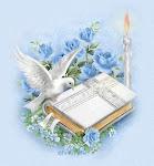 Bosquejos Evangelísticos