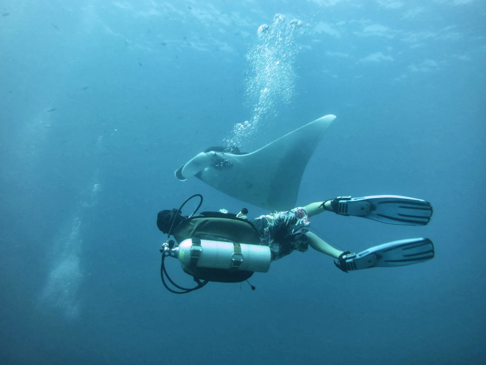 Dansk Dykning i Thailand - Scandinavian Dive Team