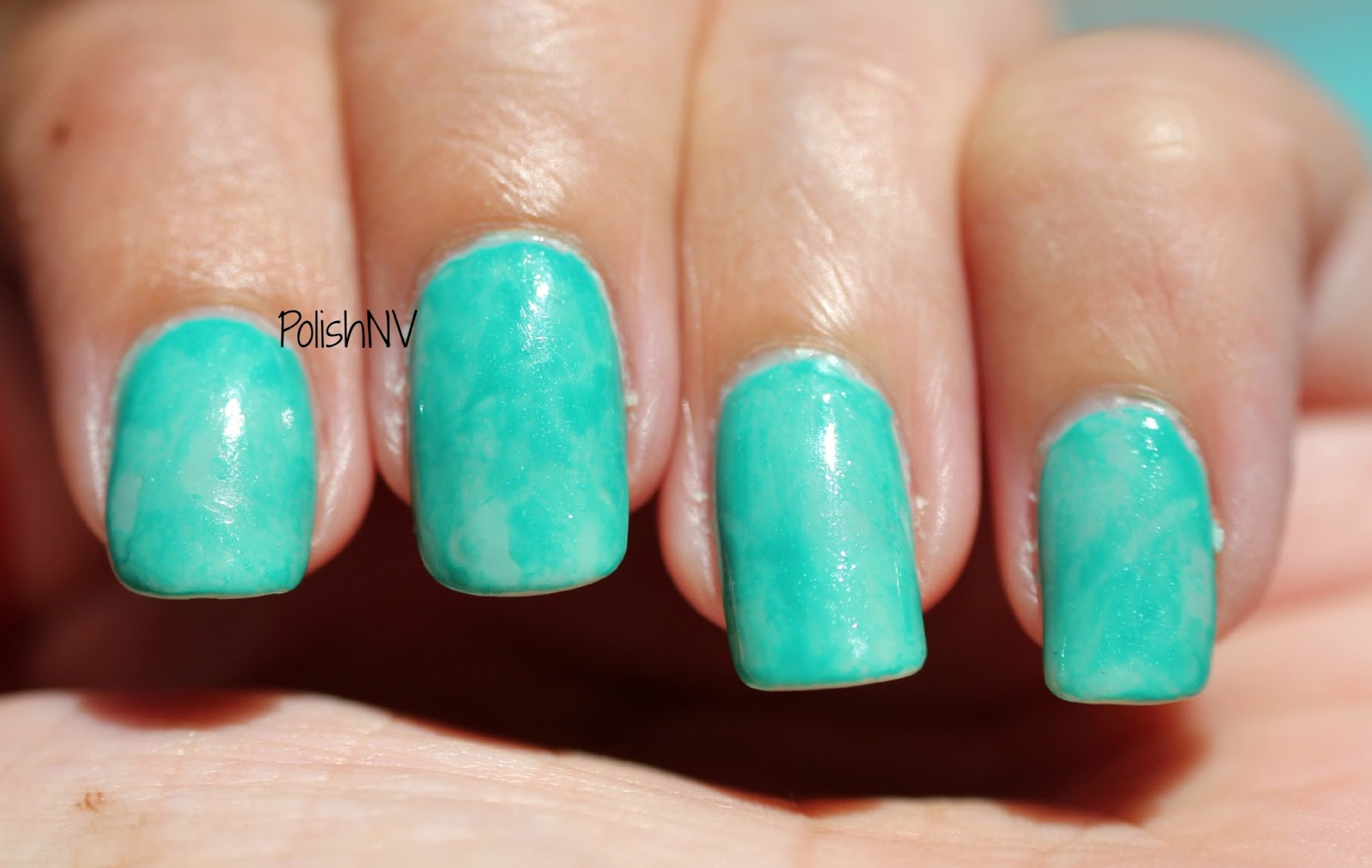 turquoise and caicos