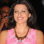 Hamsa Nandini Latest Photo Gallery at Bhai Movie Triple Platinum Disc Function