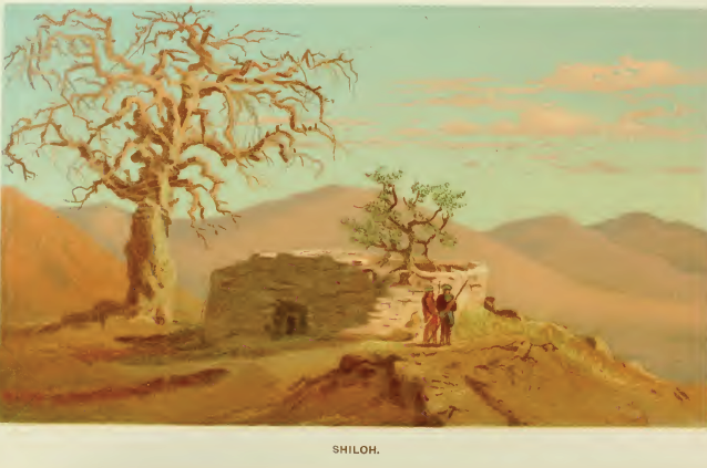 shiloh muslim Muslim pilgrims to shiloh mention a mosque called es-sekineh where the memory of jacob's and joseph's deeds was revered  shiloh (bible) history.