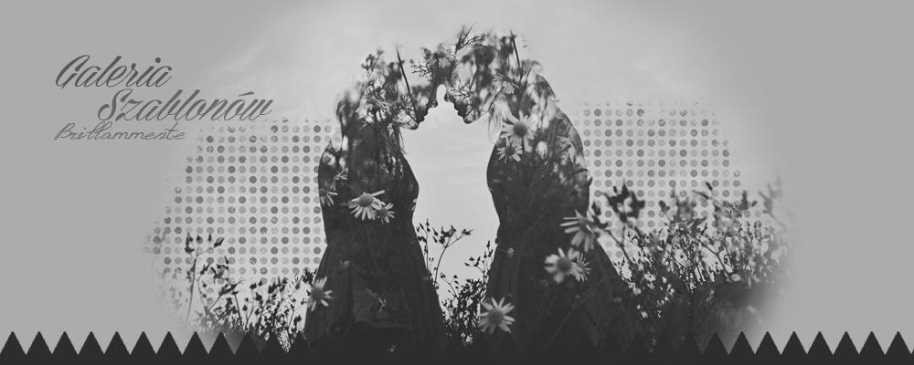 Galeria Szablonów || Brillammente