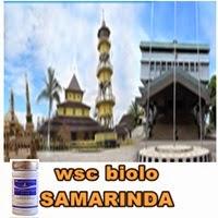 agen obat pelangsing wsc biolo samarinda