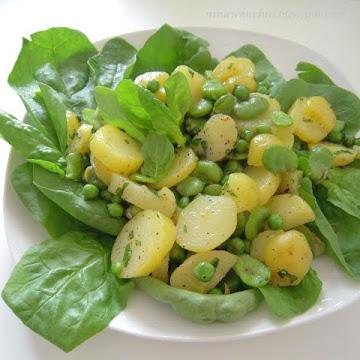 Sałatka z bobem, młodymi ziemniakami i groszkiem na liściach szpinaku - Czytaj więcej »