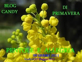 Blog-candy di Primavera