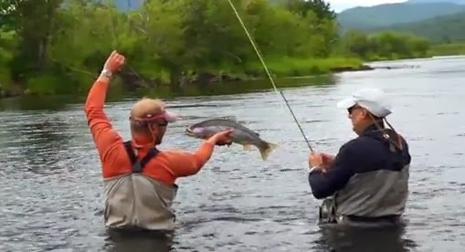 World record pink salmon