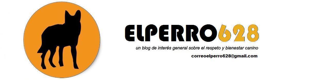 elperro628