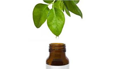 Tea Trea Oil: My Favorite Natural Cure All. and a note on MRSA