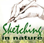 Nature Sketchers