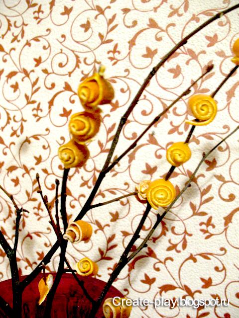 Tangerine mimosa