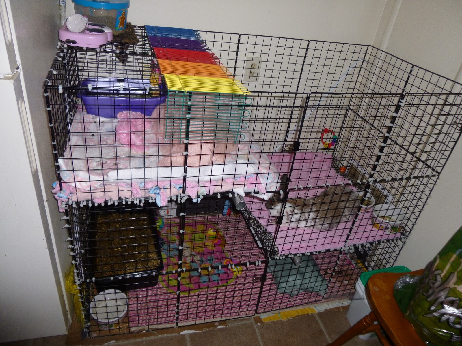 Homemade Chinchilla Cages Plans The homemade rabbit condo is