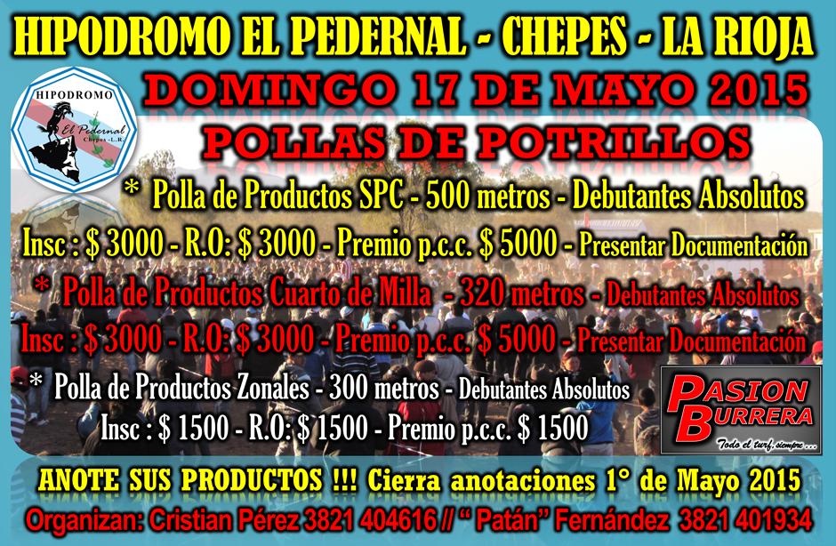 CHEPES - 17 DE MAYO - POLLAS