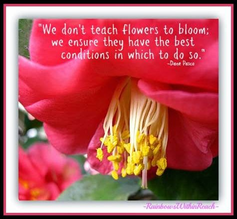 """We don't teach flowers to bloom"" #TeacherQuote EOY Celebration"