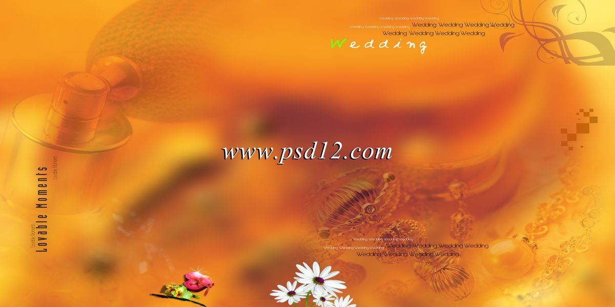 Indian Wedding Album Templates Free Download Indian Wedding Album Templates