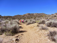Heading south on Black Rock Canyon Trail en route to Warren Point, Joshua Tree National Park