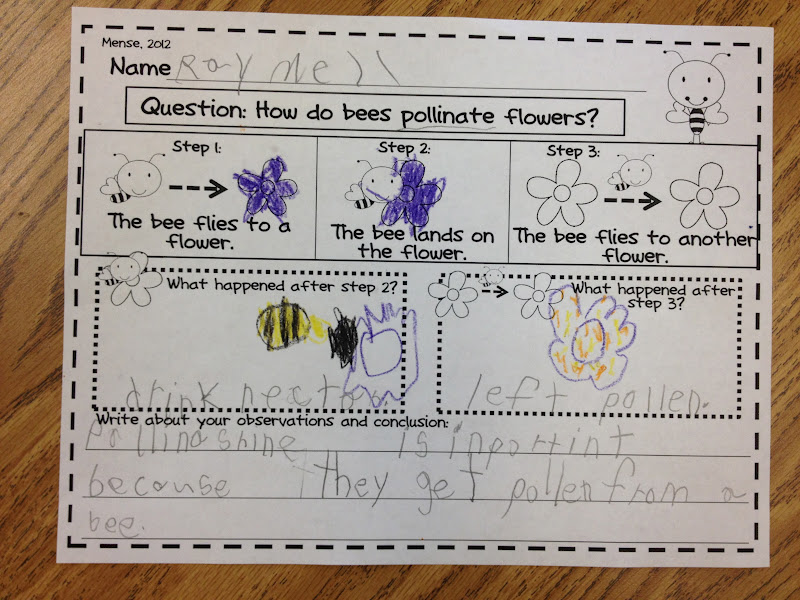 Little Miss Glamour Goes To Kindergarten creepy crawlers – Pollination Worksheet