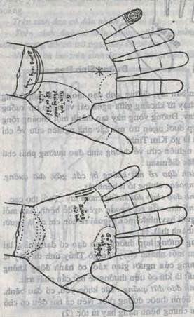 Bói Toán Cách xem bói chỉ tay đường tình duyên-hôn nhân-sự nghiệp trên bàn tay 4