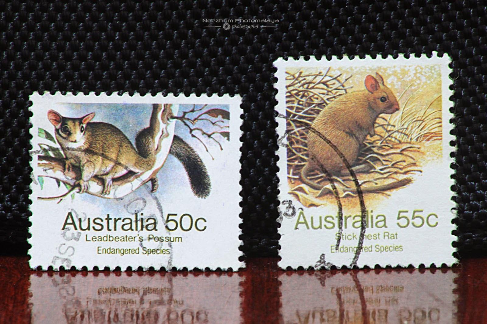 Australia 1981 Endangered Species - Leadbeater Possum 50 cents, Stick nest Rat 55 cents