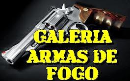 CLIC NA IMAGEM E CONHEÇA NOSSA GALERIA DE ARMAS DE FOGO