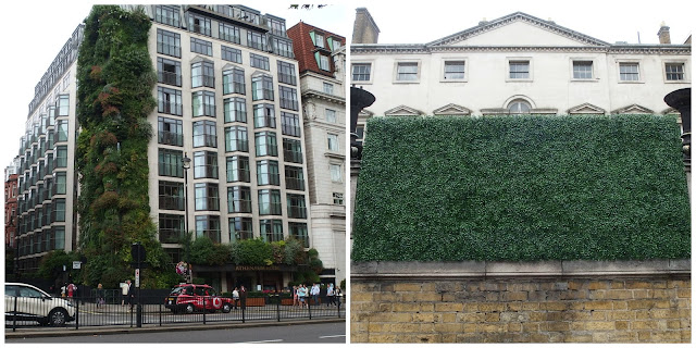 A lush green wall and an artificial one as seen on Piccadilly in August 2015