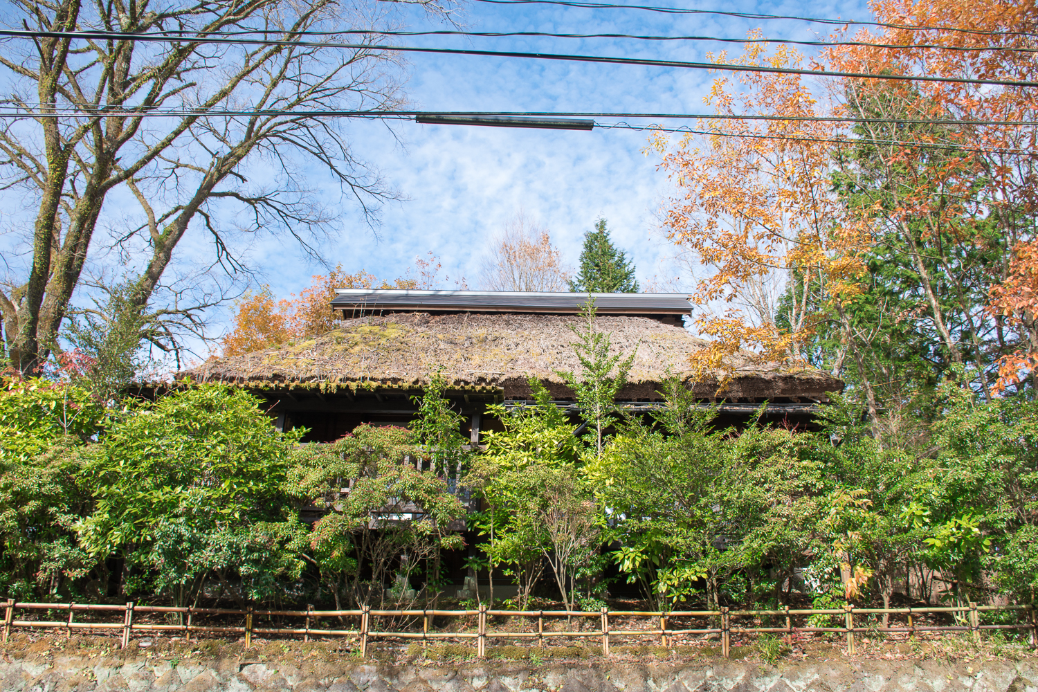 traditional houses and autumn landscape japan