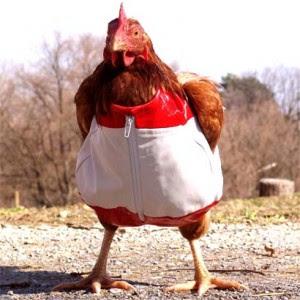 video culo roto polla enorme: