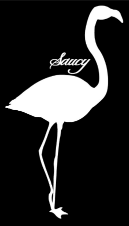Saucy Flamingo