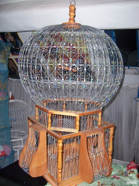 Article and information cage a oiseaux deco for Deco cage a oiseaux
