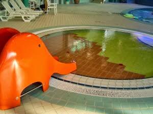 jaime la piscine surtout la douche chaude aprs quand on a nag un kilomtre ou plus parce quau dbut on comptait les longueurs et puis ensuite on ny - Piscine Nogent Le Roi