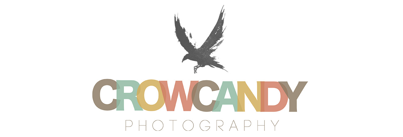 Crow Candy Photography